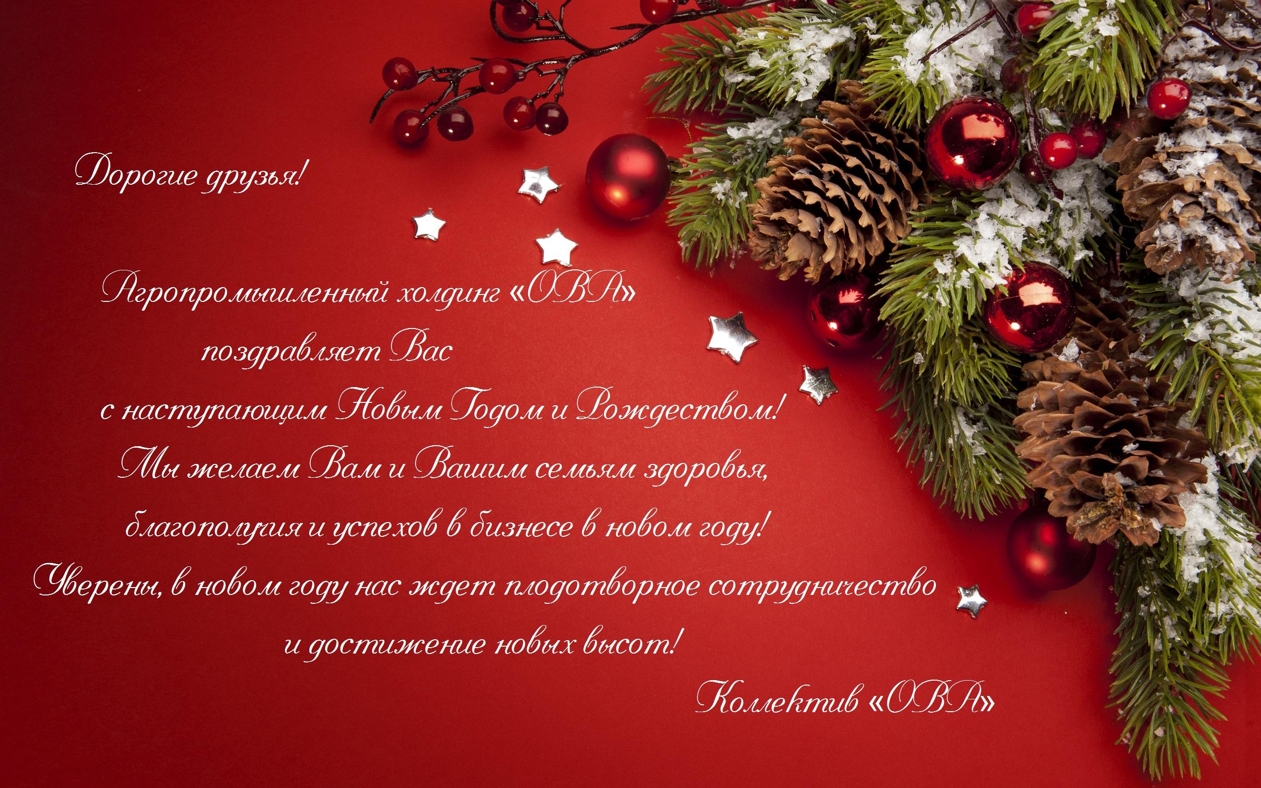 ОВА_с Новым Годом !
